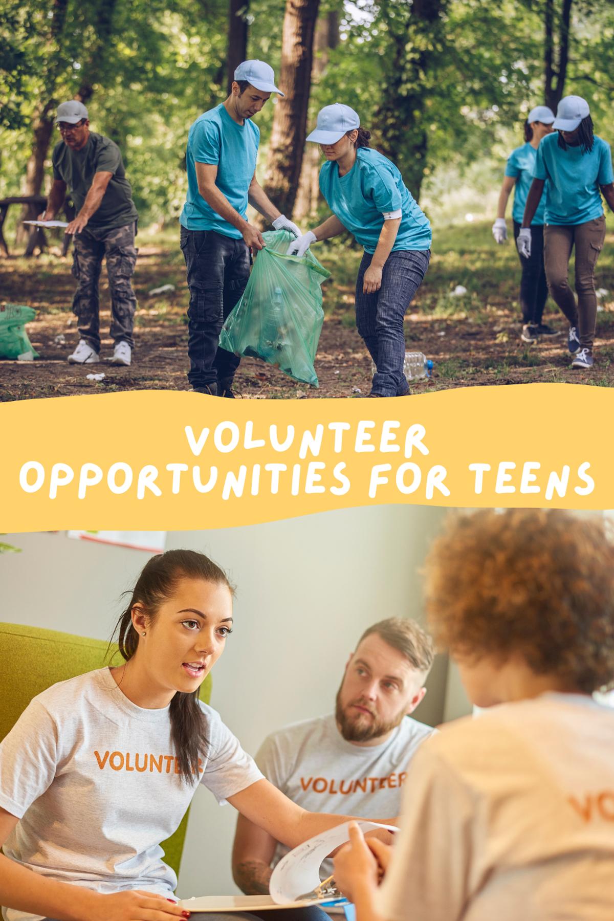 Summer Volunteer Programs For Teens School